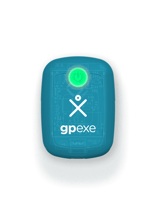lt gpexe system - device